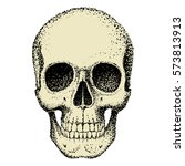 human skull with lower jaw... | Shutterstock .eps vector #573813913