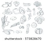 set of various silver... | Shutterstock .eps vector #573828670