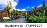 panoramic view of cactus garden ... | Shutterstock . vector #573995824