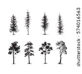 trees sketch set  hand drawing... | Shutterstock .eps vector #574016563