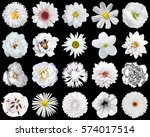 mega pack of natural and... | Shutterstock . vector #574017514