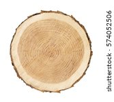 wooden stump isolated on the... | Shutterstock . vector #574052506