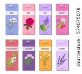 Essential Oil Labels Set. Rose...