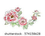 chinese traditional painting  ... | Shutterstock . vector #574158628
