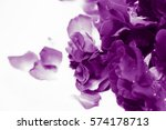Stock photo natural light and shadow in vintage style of blur purple roses and purple rose petals in bath 574178713
