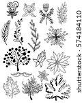 set of vintage floral elements. ... | Shutterstock .eps vector #574184110
