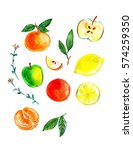 fruit painted watercolour | Shutterstock . vector #574259350