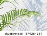 palm leaves and shadows on a... | Shutterstock . vector #574284154