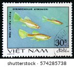 Small photo of MOSCOW, RUSSIA - JANUARY 7, 2017: A postage stamp printed in the Vietnam shows Gyrinocheilus aymonieri fish, circa 1980
