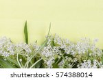 wild white small inflorescence...   Shutterstock . vector #574388014