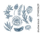 hand drawn herb and flower set. ... | Shutterstock .eps vector #574403629