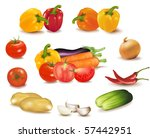 the colorful group of... | Shutterstock .eps vector #57442951