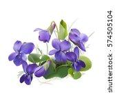 viola odorata. sweet violets on ... | Shutterstock .eps vector #574505104