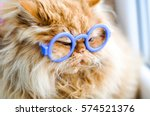 Stock photo funny cat with glasses 574521376