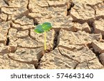 desolate land or dry areas have ... | Shutterstock . vector #574643140