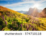 calm view of the alpine hill in ... | Shutterstock . vector #574710118