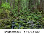River With Mossy Stones Along...