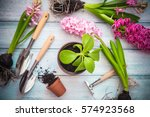 Workspace  Planting Spring...