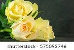 yellow roses on slate ... | Shutterstock . vector #575093746