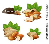 almond kernel with green leaves ... | Shutterstock .eps vector #575114230