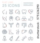 set vector line icons  sign and ... | Shutterstock .eps vector #575126290