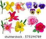 Set Flowers Isolated White Background - Fine Art prints