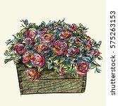 Rose Basket Sketchbook Style.