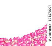 Stock vector realistic vector pink rose petals on white background 575270074