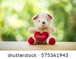 Valentines And Teddy Bear