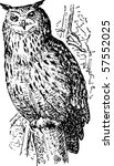 bird bubo | Shutterstock .eps vector #57552025