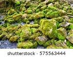River Pliva Spring In Wonderfu...