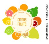 citrus fruits flat set with... | Shutterstock .eps vector #575563930