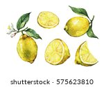 set with whole and slice fresh... | Shutterstock . vector #575623810