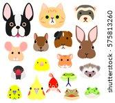 Pet Animals Faces Colorful Set