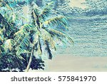 Tropical Palm Trees In Sunligh...