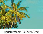 Green Tropical Palm Trees In...