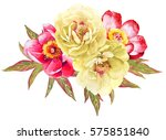 white and red peonies flower... | Shutterstock . vector #575851840