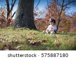 little baby girl  colors autumn | Shutterstock . vector #575887180