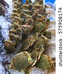 Small photo of Flower crab or Blue crab or Blue swimmer crab or Blue manna crab at super market