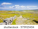 Wild Irish Landscape With Ston...