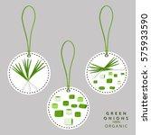 vector illustration logo for...   Shutterstock .eps vector #575933590
