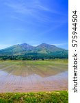 paddy fields and mountains in... | Shutterstock . vector #575944504