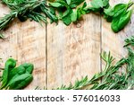 mint  rosemary  thyme   fresh... | Shutterstock . vector #576016033