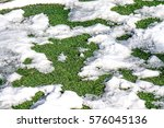 Melting Snow On Artificial Turf