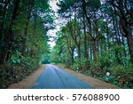 Thai Urban Forest Road Cover...