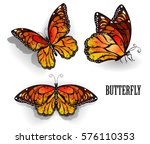 Stock vector set of orange realistic isolated monarch butterflies on white background 576110353