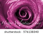 close up  rose with water drops ... | Shutterstock . vector #576138340