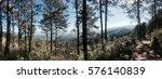 flower    Shutterstock . vector #576140839