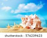 summer beach. | Shutterstock . vector #576239623