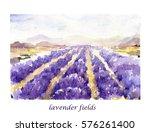 watercolor lavender fields....   Shutterstock . vector #576261400